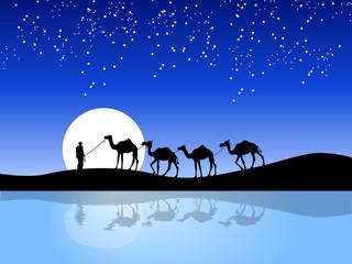 A vector night scene of camel and man © Ritesh Kumar