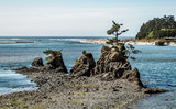 Coastal View - Oregon - 233432578