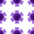 Beautiful violet flower. Seamless floral pattern. Vector - 233433160