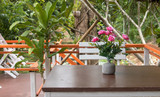Dinning table on patio deck - 233442333