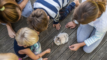 Top view of four kids and their pet rabbit