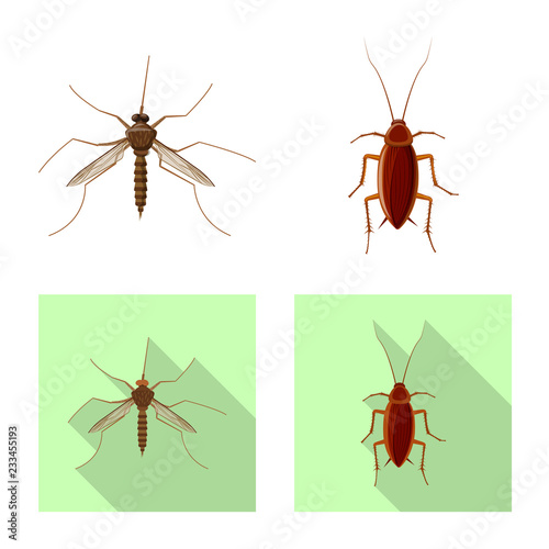 Vector illustration of insect and fly icon. Collection of insect and element stock vector illustration. - 233455193