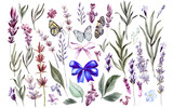 Set of watercolor lavender flowers on white background - 233468760