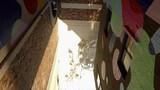 Colorful laneway art adornes brick building walls - 233486905