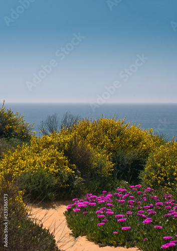 Widok na morze na portugalskim wybrzeżu Algarve