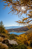 Herbstlicher Sonnenschein am See im Lungau - 233588763