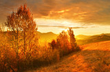Autumn morning in highland