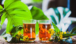 Herbal tea made from st. john's wort, organic tea with herbal Hypericum  extracts