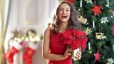 happy young woman in red dress with poinsettia near Christmas tree. Happy xmas time. Woman decorating room with red poinsettia. This video was shot in PRORes 422 codec. - 233612366