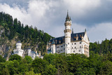 View of the Neuschwanstein Castle in Bavaria, Germany - 233730925
