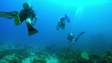 Following a set of scuba divers above bleached coral in the Seychelles - 233741110