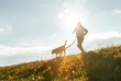 Leinwandbild Motiv Bright sunny Morning Canicross exercises. Man runs with his beagle dog.