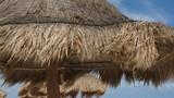 Straw palapa umbrella shade in sea breeze. Tourist pov at resort on Mayan Riviera, Mexico. - 233807377