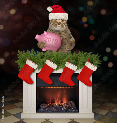 The cat in Santa Claus hat with a piggy bank is behind the Christmas fireplace. Dark background. - 233810918