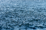 Falling rain drops, splash on water surface - 233830933