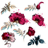 Collection of vector flowers for design - 233835770