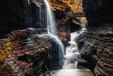 Watkins Glen Gorge Trail - 233841383