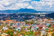 Dalat city aerial panoramic view - 233848526
