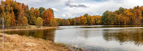 Autumn - 233865394