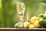 Infused water with lime and lemon in tall glass on wood and nature background