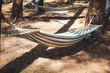 Hammocks - great for topics like relaxing, holiday etc