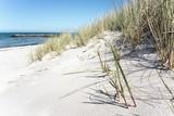 Sanddüne am Ostsee-Strand