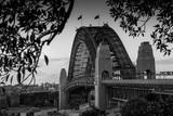 Sydney Harbour Bridge © Leah-Anne Thompson