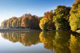 Bäume im Herbst - 234039373