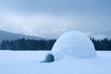 Real snow igloo house in the winter Carpathian mountains. Snow-covered firs on the background - 234042587