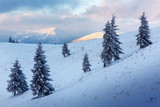 Fantastic orange winter landscape in snowy mountains glowing by sunlight. Dramatic wintry scene with snowy trees. Christmas holiday concept. Carpathians mountain, Ukraine, Europe - 234044929