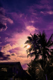 Palm trees silhouette against dramatic purple evening sky. Filter toned effect, vibrant colors. Vertical - 234089128