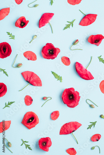 Red poppy flowers leves buds and seed boxes pattern background top view flat lay