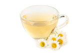 Cup of tea with chamomile flowers on white background