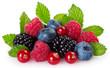 Leinwanddruck Bild - Fresh berries on white background