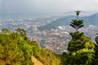 Penang Hill - 234358779