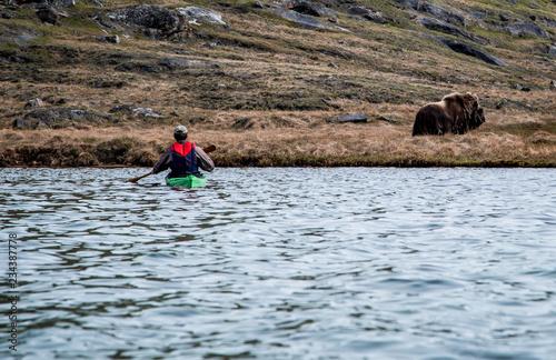 Foto Murales Greenland adventure travel