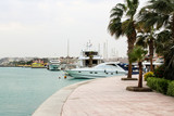 Yachts under palm trees in the sea harbor of Hurghada, Egypt. Port with tourist boats on the Red Sea. - 234475526