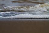 foam in the ocean