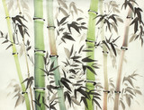 bright bamboo forest