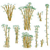 Brown bamboo illustration set. Vector.