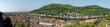 View from Heidelberg Castle - 234644319