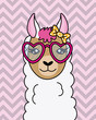 cute llama with sunglasses and tie