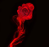 rose and swirl of red smoke isolated on black background