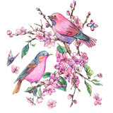 Watercolor floral spring greeting card, pink blooming branches of cherry peach, birds - 234763342