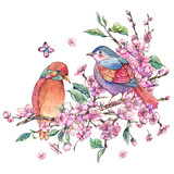 Watercolor floral spring greeting card, pink blooming branches of cherry peach, birds - 234763771