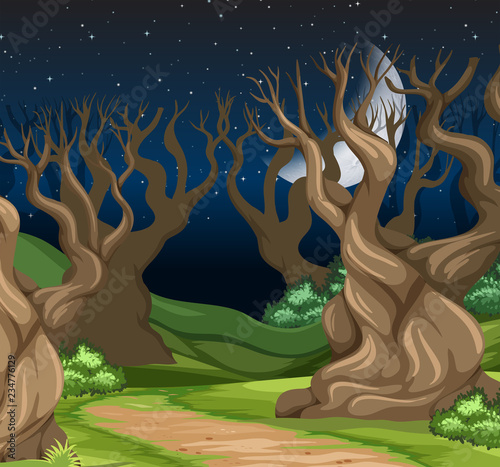 A night forest landscape - 234776129