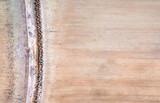 Textura de bambu © JCLobo