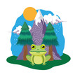 cute toad in the landscape