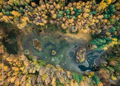 Herbstwald mit kleinem, ausgetrocknetem See aus der Vogelperspektive - Luftaufnahme - 234860363