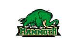 mammoth logo design template © zuravagansa